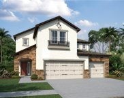 11609 Navel Orange Way Unit 163, Tampa image