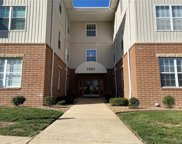 1507 South Old Highway 94 Unit #308, St Charles image