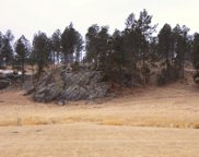TBD Big Valley Trail Road, Custer image