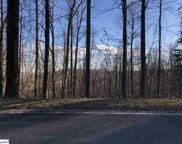 Witch Hazel Trail, Landrum image