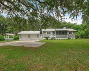 18016 RED BASS DR, Jacksonville image