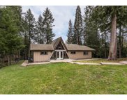 52695 NW EASTVIEW  DR, Scappoose image