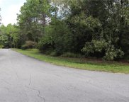 00 Sw 211 Circle, Dunnellon image