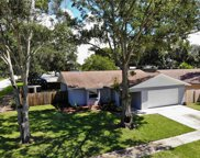 1343 Homestead Drive, Palm Harbor image