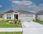 13018 Satin Lily Drive, Riverview image