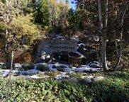 40650 Wild Iris, Shaver Lake image