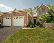 14110 Woods Mill Cove  Drive, Chesterfield image