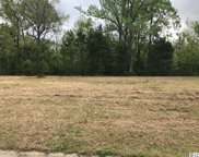 438 Channel View Dr., Conway image