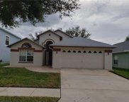18906 Twinberry Drive, Tampa image