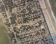 105 Mallard Drive, Duck image