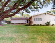 11617 Carrollwood Drive, Tampa image