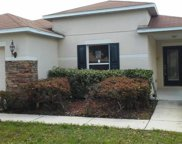11143 Golden Silence Drive, Riverview image