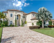 7134 Ticklegrass Street, Winter Garden image
