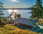 4139 Pear Point Rd, Friday Harbor image
