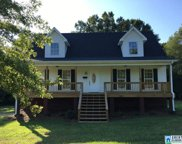 2035 Wolf Creek Rd, Pell City image