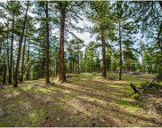 10250 Highway 73, Conifer image