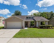 1716 Pintail Court, Lutz image