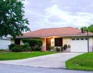58 Red Mill Drive, Palm Coast image