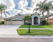 9909 Kingshyre Way, Tampa image