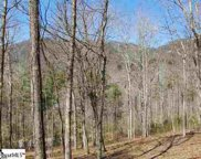 101 Buck Creek Trail, Travelers Rest image
