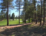 3883 S Clubhouse Circle Unit #321, Flagstaff image