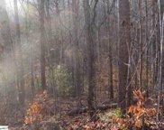 450 Rutledge Lake Road, Greenville image