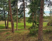 520 Fox Acres Drive, Red Feather Lakes image