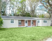 16206 Dew Drop Lane, Tampa image