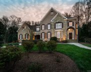 18601  Maplecroft Lake Lane, Davidson image