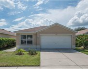 11313 Palm Island Avenue, Riverview image