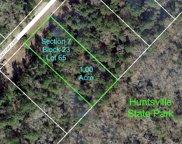 7-23-65 Sky Oak Lane, Huntsville image