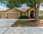 28718 Crooked Stick Court, Wesley Chapel image