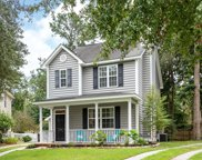 1226 Spotted Owl Drive, Mount Pleasant image