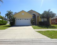 2539 Aster Cove Lane, Kissimmee image