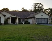 485 Druid Road, Spring Hill image