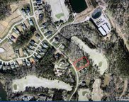 7244 Hasentree Way, Wake Forest image