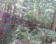 Lot 323 Chestnut Dr, Gatlinburg image