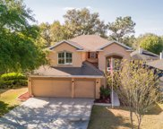 1506 COTTON CLOVER DR, Orange Park image