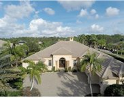 462 Terra Vista Ct, Naples image