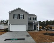 193 Mountain Ash Lane, Myrtle Beach image
