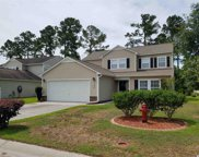 185 Weeping Willow Dr, Myrtle Beach image