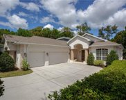 12303 Forest Highlands Drive, Dade City image