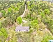 585 Sunhill Dr, Remlap image
