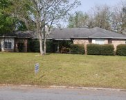 2644 LOOPRIDGE DR, Orange Park image