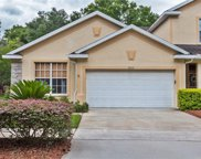 3505 Cotton Mill Place, Valrico image