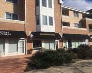 2300 Chestnut Avenue Unit 101, Glenview image