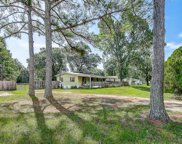 12702 Greenland Drive, Riverview image