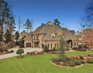 930  Wessington Manor Lane, Fort Mill image
