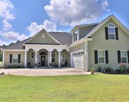 2101 Wood Stork Drive, Conway image