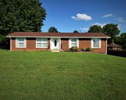 113 Mount Vernon Dr, Old Hickory image